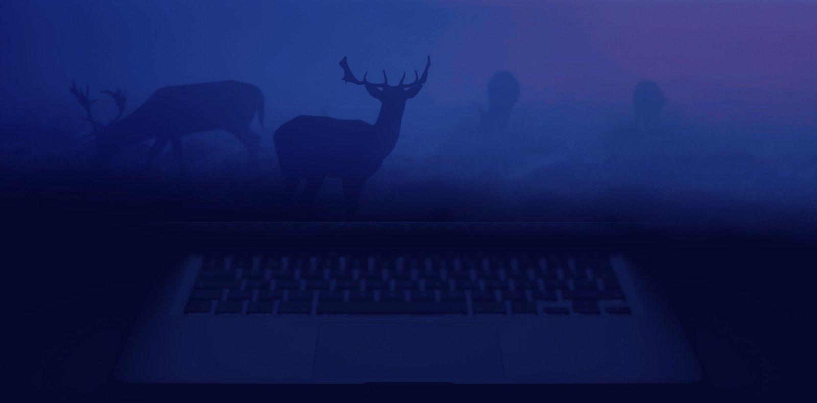 Themewolves slider web design background